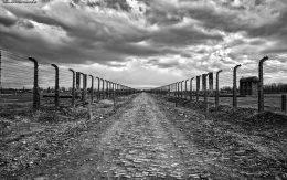 Wewnętrzna droga w obozie w Brzezince