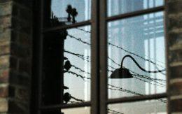 Window auschiwtz birkenau