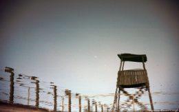 Odbicie w wodzie Auschwitz