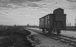 Bydlęcy wagon transport więźniów do Auschwitz - Birkenau