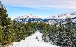 Spacer na gęsią Szyje zimą z Rusinowej polany