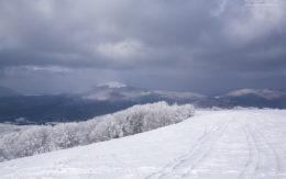 Ze szlaku na Tarnicę