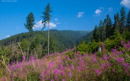 Krajobrazy Tatr Słowackich